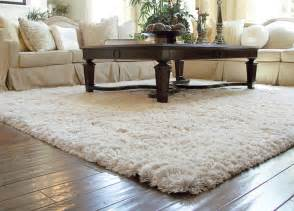 Living Room Shag Rug Auroroa Borealis Shag Rug Traditional Living Room