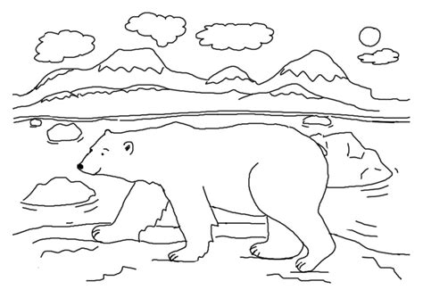 Free Coloring Pages Of Arctic Animals Polar Coloring Pages