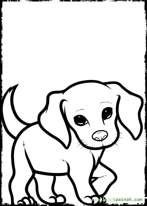 free printable coloring pages cute puppies coloring pages of puppies and kittens class puppy kitty