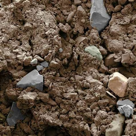 25 best ideas about clay soil on pinterest colleges in houston planting in clay and russian sage