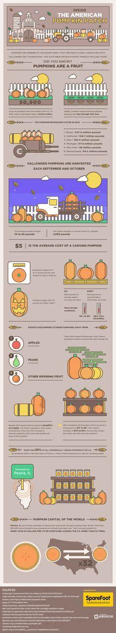 infographics designspiration refreshing colors https www behance net gallery 20535069