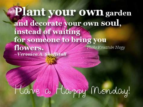 flower quotes sayings images page 47