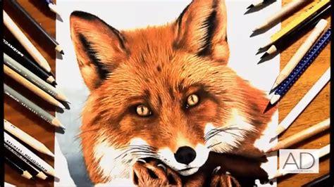 dibujos realistas con colores dibujo realista de zorro realistic fox drawing
