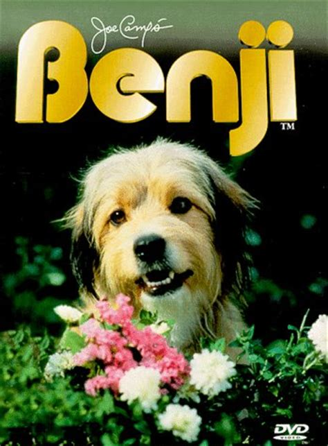what of is benji i feel for benji let the in
