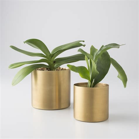 indoor plant pot brass planter