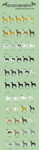 great dane color chart great dane coat colors adoptables closed by anellyz on