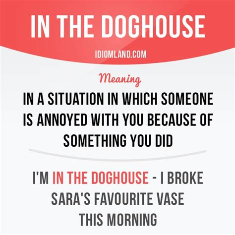 in the dog house idiom 1000 images about english idioms and phrasal verbs on pinterest idioms esl and
