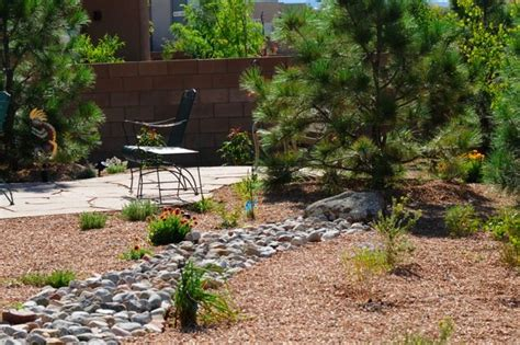 Desert Landscape Ideas For Backyards by Small Backyard Desert Landscaping Ideas Eanavevai Home