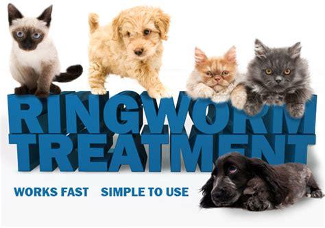 how do dogs get ringworm contamination of ringworm