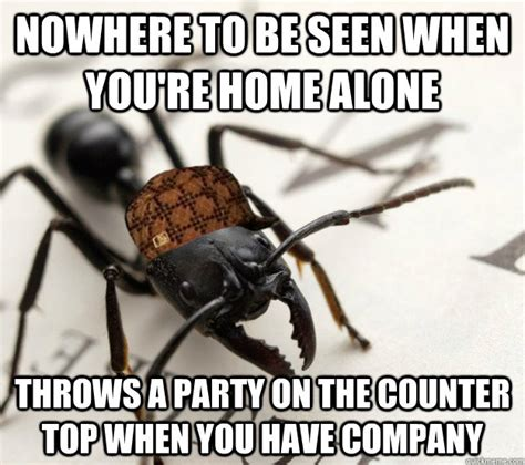 Ants Meme - oh you bought that food for you that s too bad i told