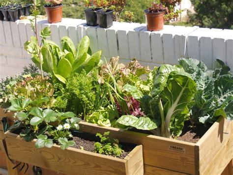 imagenes de jardines urbanos iniciaci 243 n en huertos urbanos en casa