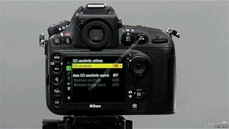 tutorial video nikon d800 nikon d800 essential training a2z p30 download full