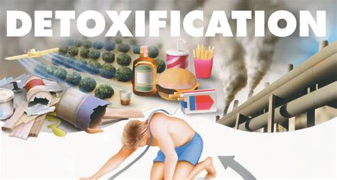 Nuclear Medicine Detox by What Is Zeolite Detox Benefits