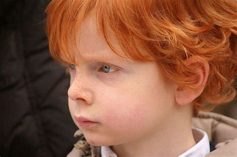 curly haircuts dublin 1000 images about red hair freckles more on pinterest