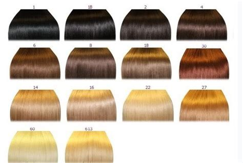 color chart for hair what are your hair and colors