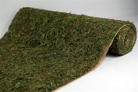 preserved moss sheeting runner 16 quot x 48 quot