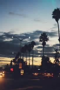 Light California by Lights Summer California Color Palm Trees