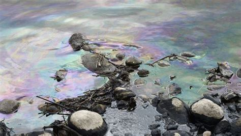 Grand River Personnel Kitchener by Significant Quantity Of Petroleum Spills Into Grand In