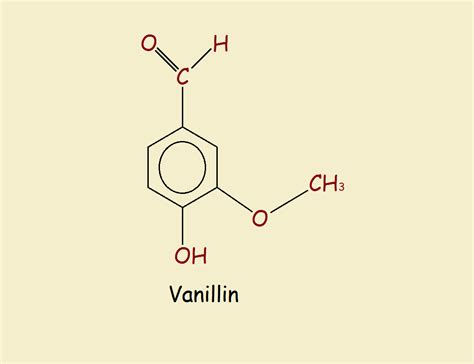 vanilla  vanillin whats  difference