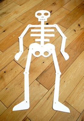 Make Your Own Paper Skeleton - a book a craft quot funnybones quot and a size paper