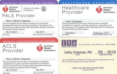 pals provider card template certifications catherine cycyk chapman ms arnp