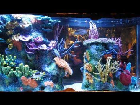 living color aquarium fish tank living color aquariums