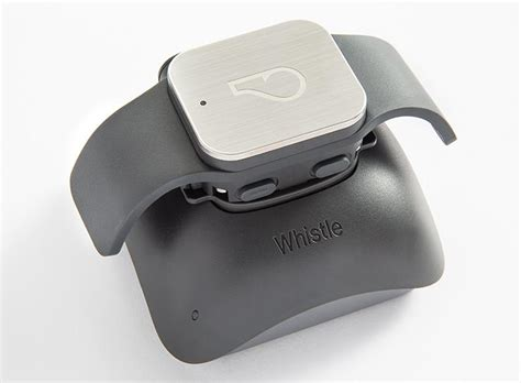 whistle tracker review whistle gps pet tracker review rating pcmag