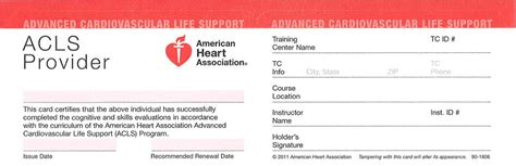 bls certification houston template cpr safety training