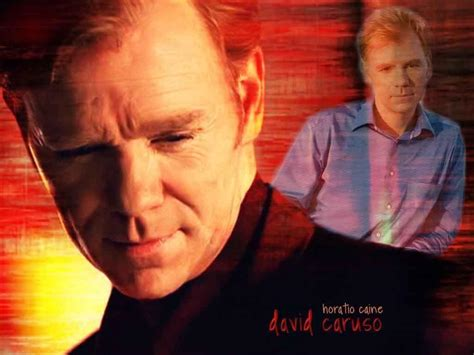 David Caruso Meme - david caruso wallpapers wallpaper cave