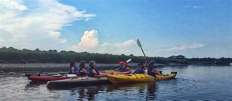 up mchenry creek without a paddle books charleston kayaking tours nature adventures