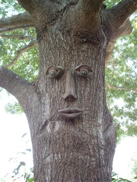tree face tree face decorations for your outdoor garden spaces