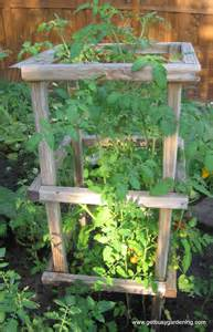 Building A Tomato Trellis 301 Moved Permanently