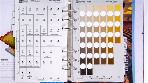 munsell soil color chart yr page agen judi slot  indonesia terpercaya