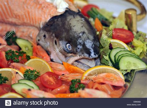 salmon buffet recipes cold salmon buffet recipes food fish recipes