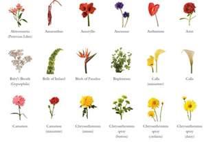 glossary fj florist