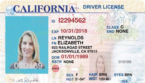 juspertor layout editor license i will create or edit any country s driving license or