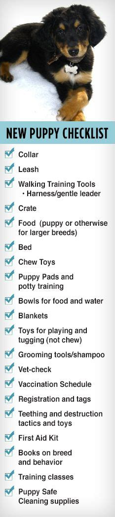 new puppy list pin by stacey sturgeon on home