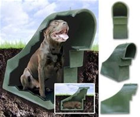 underground dog houses kennel building ideas on pinterest dog kennels pet resort and dog rooms