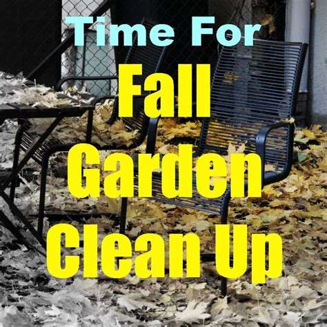 fall garden clean up 17 best images about fall winter maintenance on