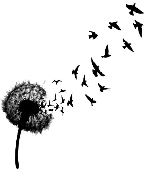 flock of birds clipart dandelion pencil and in color