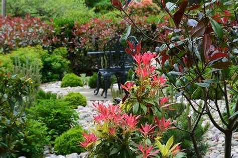 lavori in giardino lavori mese giardino giugno lavori mese giardino