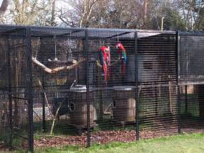 Used Rabbit Hutch For Sale Weld Mesh Blog Amp News