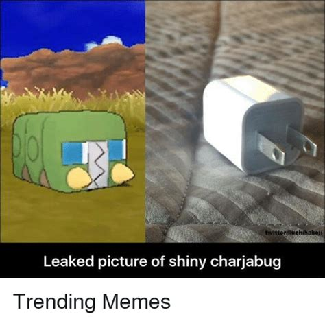Pics For Memes - twitter euchihakoji leaked picture of shiny charjabug