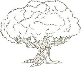 tree coloring page printable free printable tree coloring pages for