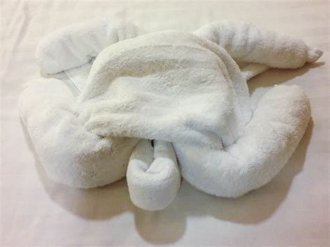 Towel Origami Animals - 72 best images about towel animals on