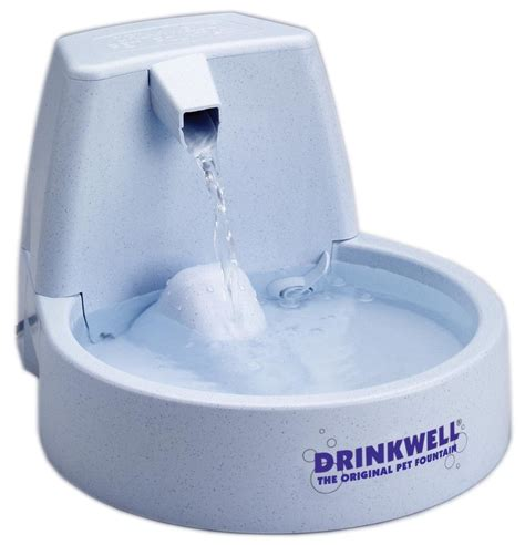 Water Dispenser For Cats drinkwell original pet review