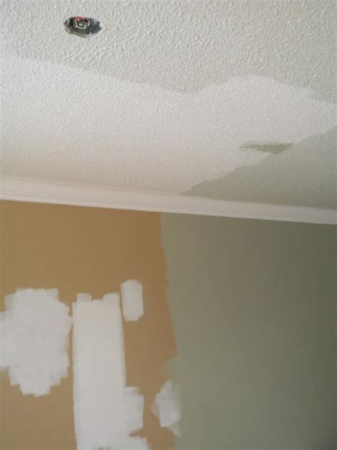 How To Remove A Stippled Ceiling by 2hd Unleashed Painting A Stipple Or Popcorn Ceiling