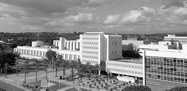 Cal State Fullerton Mba by Personal Statement Csuf