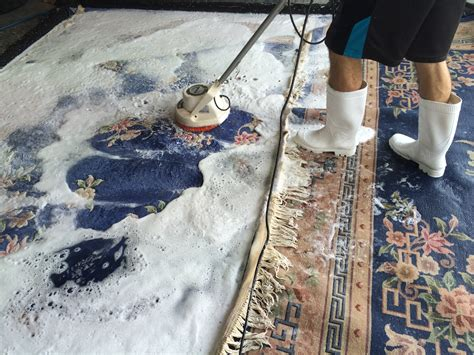 rug cleaning orlando rug cleaning orlando