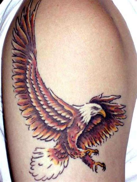 feminine eagle tattoo designs bird gallery pictures of bird tattoos